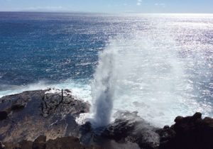 Halona Blowhole Oahu Private Tour